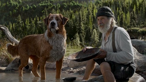 man with dog in wild
