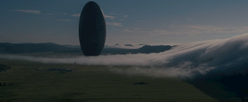 Egg shape in big field with fog
