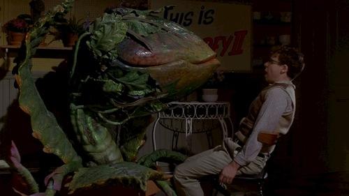 man talking to giant alien plant
